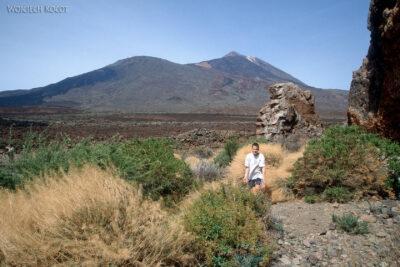 028 - Wparku del Teide