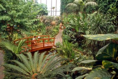 078 - Icod - ogród motyli