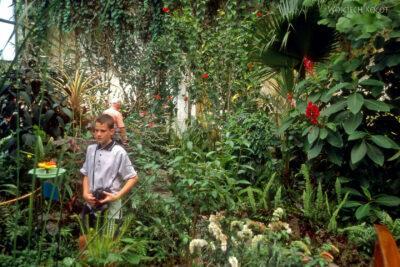 088 - Icod - ogród motyli