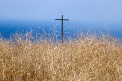 015 - Krzyż trawy imorze