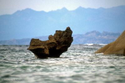044 - Ogon wieloryba