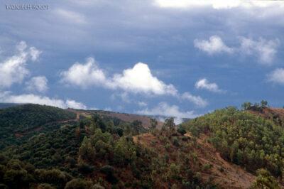 050 - Podrodze wgóry