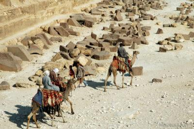 9123 - Giza - Camele ustóp Chefrena