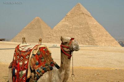 9141 - Giza - Piramidy icamele