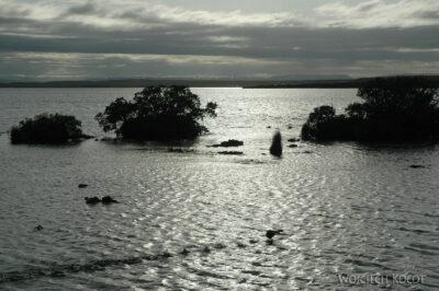 18005 - Jezioro Myvatn