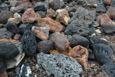 20037 - Kamienie naplaży