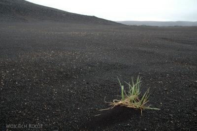 20068 - Czarna pustynia
