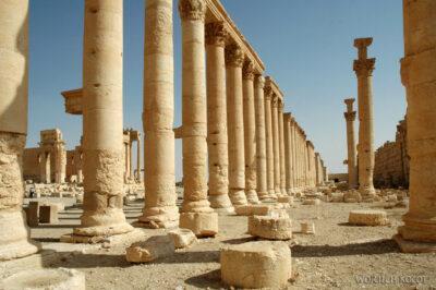 2098 - Palmyra - świątynia Baala