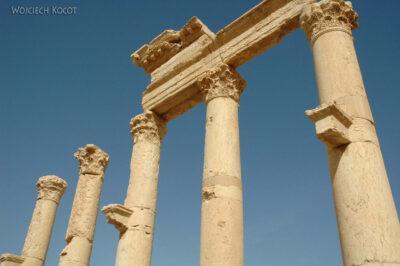 2111 - Palmyra - ruiny miasta