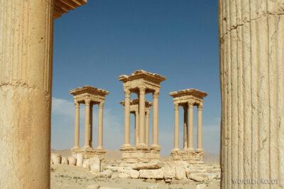 2140 - Palmyra - ruiny miasta