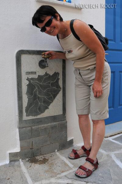 07061 - Patmos - kran kaczka