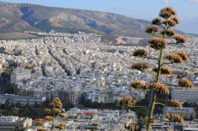 15092 - Ath - agawy nagórze Lykavittos