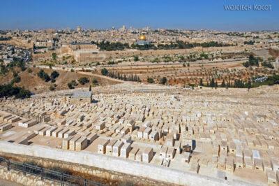 008 - Cmentarz żydowski