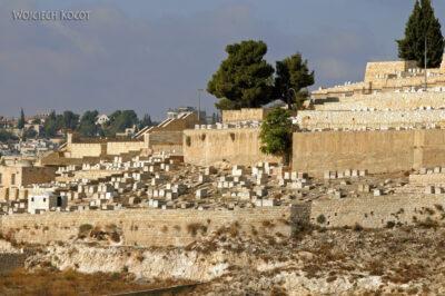 013 - Cmentarze ibudynki naGórze Oliwnej
