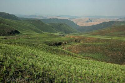 SA12108-Na Langalibalele Ridge