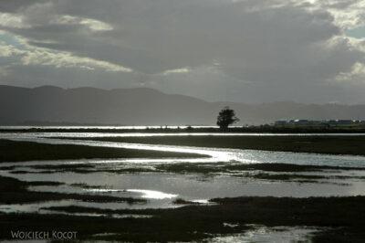 SA19080-Knysna-widoczki przy lagunie