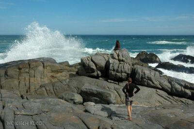 SA29106-West Coast National Park - Atlantyk