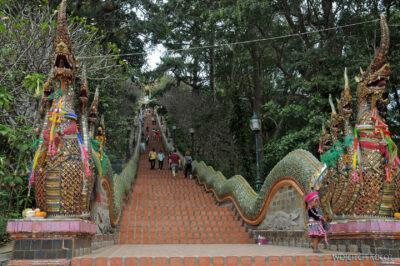 """Schody doWat Pratat Doi Suthep - poręcze wkształcie """"Naga"""""""