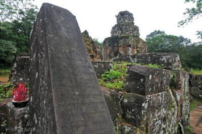 3W6024-Ruiny MimozaMy Son