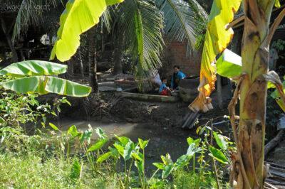 3W8116-Delta Mekongu - wioska