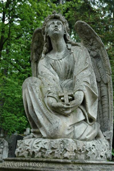 U12009-Na Cmentarzu Łyczakowskim