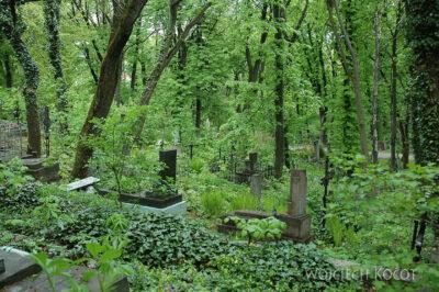 U12033-Na Cmentarzu Łyczakowskim