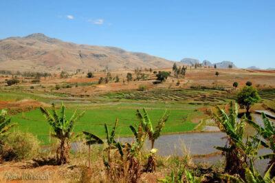 Ma21015-Po drodze doparku Andringitra