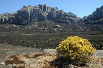 Ma22096-Góry wParku Andringitra