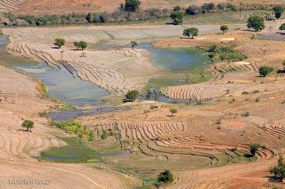Ma23036-Dolina zpolami ryżowymi