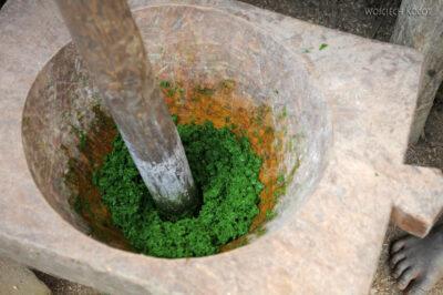 Ma07105-Zielone papu