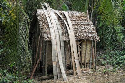Ma08058i-Bambus-budulec