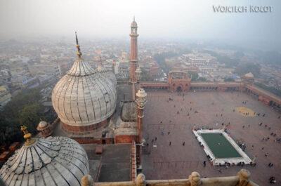 IN02203-Delhi-Widok zwieży