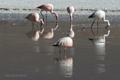 PBk069-przy Laguna Chiar Kkota