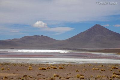 PBk134-Laguna Colorada