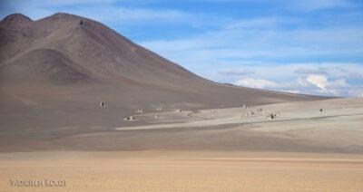 PBk236-Salvadore Dali Desert