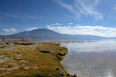 PBl018-Przy Laguna Colorada