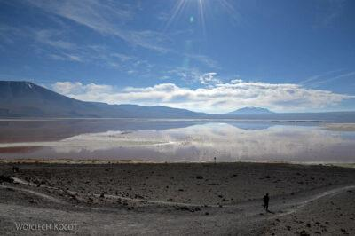 PBl069-Przy Laguna Colorada