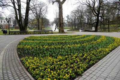 BałtD047-Ryga-w parku
