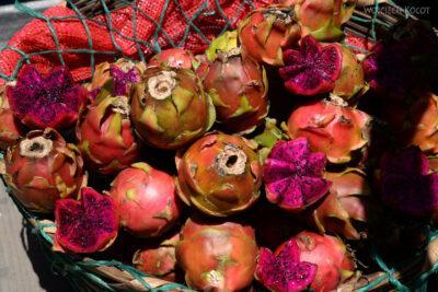 g094-W Santiago-dragon fruit