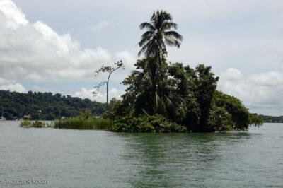p031-Rejs - ptasia wyspa