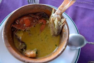 p156-Livingstone-zupa nasoku kokosowym
