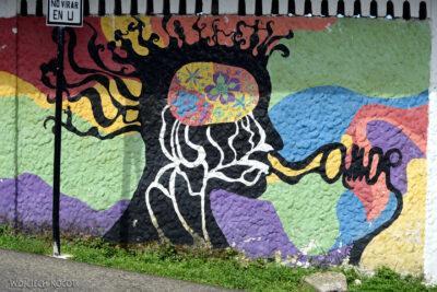 p190-Livingstone-mural