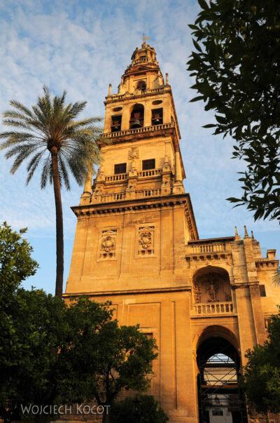Por08016-Mezquita Catedral de Córdoba