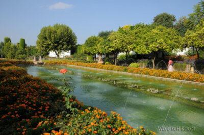 Por08109-Jardines Del Alcázar