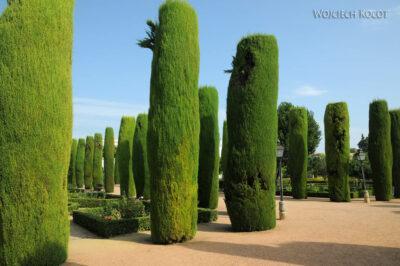 Por08118-Jardines Del Alcázar