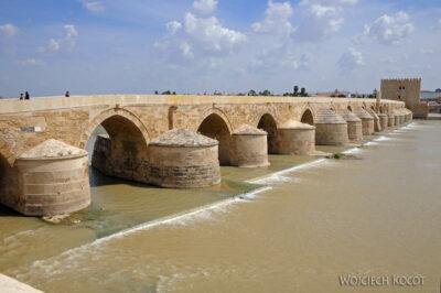 Por08224-Puente Romano
