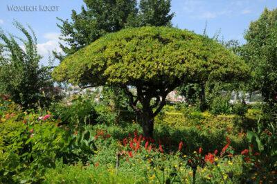 Por10160-Alhambra-Park