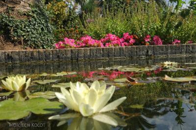 Por10178-Alhambra-Park