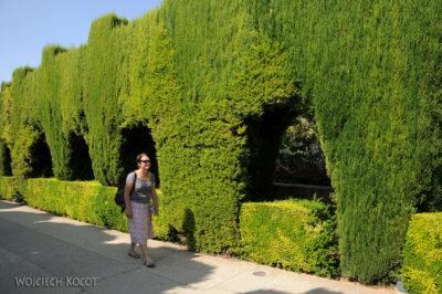 Por10179-Alhambra-Park