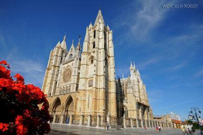 Por20041-Leon - Katedra